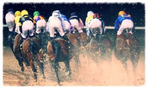 Horse-Racing---Wolverhamp-006